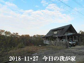 2018-11・27 今日の里山は・・・ (1).JPG