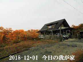 2018-12・01 今日の里山は・・・ (1).JPG