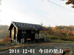 2018-12・01 今日の里山は・・・ (2).JPG