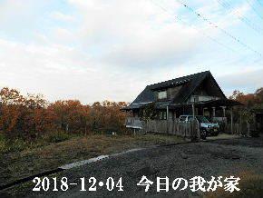 2018-12・04 今日の里山は・・・ (1).JPG