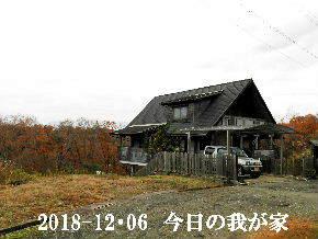 2018-12・06 今日の里山は・・・ (1).JPG