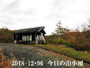 2018-12・06 今日の里山は・・・ (2).JPG