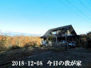 2018-12・08 今日の里山は・・・ (1).JPG