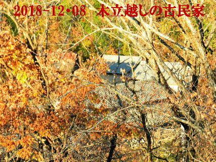 2018-12・08 木立越しの古民家 (2).JPG