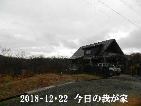 2018-12・22 今日の里山は・・・ (1).JPG