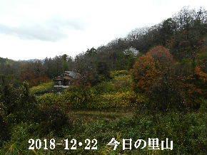 2018-12・22 今日の里山は・・・ (4).JPG