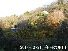 2018-12・24 今日の里山は・・・ (4).JPG
