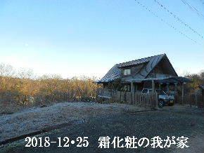2018-12・25 今日の里山は・・・ (1).JPG