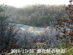 2018-12・25 今日の里山は・・・ (3).JPG