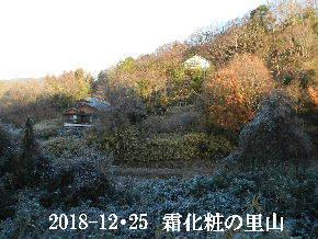 2018-12・25 今日の里山は・・・ (4).JPG