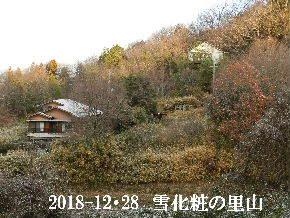 2018-12・28 雪化粧の里山・・・ (4).JPG