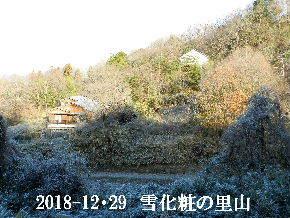 2018-12・29 雪化粧の里山 (4).JPG