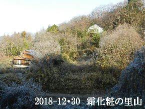 2018-12・30 今日の里山は・・・ (4).JPG
