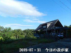 20185-07・31 今日の里山は・・・ (1).JPG