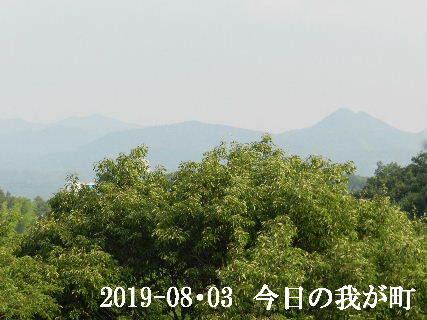 2019--08・03 今日の我が町.JPG