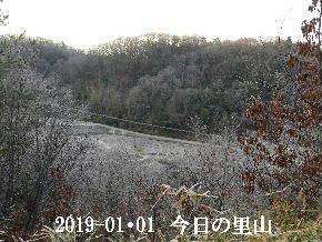 2019-01・01 我が家の初詣で (15).JPG