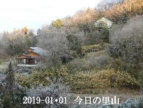 2019-01・01 我が家の初詣で (16).JPG