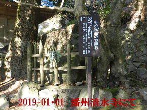 2019-01・01 我が家の初詣で (2).JPG