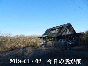 2019-01・02 今日の里山は・・・ (1).JPG