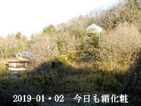 2019-01・02 今日の里山は・・・ (4).JPG
