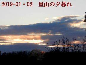 2019-01・02 里山の夕暮れ (1).JPG