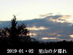 2019-01・02 里山の夕暮れ (3).JPG