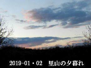2019-01・02 里山の夕暮れ (4).JPG