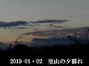 2019-01・02 里山の夕暮れ (5).JPG