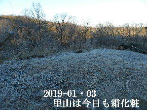 2019-01・03 霜化粧の里山 (3).JPG
