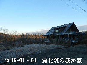 2019-01・04 今日の里山は・・・ (1).JPG