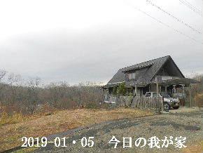 2019-01・05 今日の里山は・・・ (1).JPG