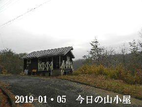 2019-01・05 今日の里山は・・・ (2).JPG