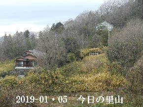 2019-01・05 今日の里山は・・・ (4).JPG