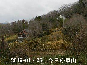 2019-01・06 今日の里山は・・・ (4).JPG