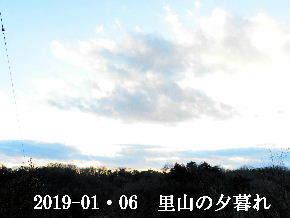 2019-01・06 里山の夕暮れ時 (1).JPG