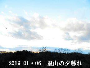 2019-01・06 里山の夕暮れ時 (2).JPG