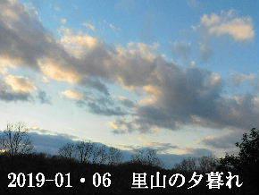 2019-01・06 里山の夕暮れ時 (3).JPG