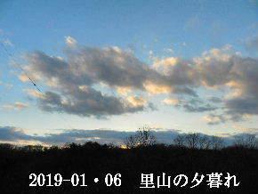 2019-01・06 里山の夕暮れ時 (4).JPG