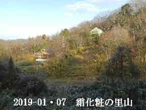 2019-01・07 今日の里山は・・・ (4).JPG