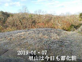 2019-01・07 里山は今日も霜化粧 (2).JPG