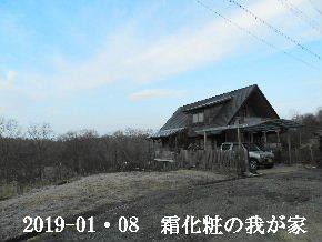2019-01・08 今日の里山は・・・ (1).JPG