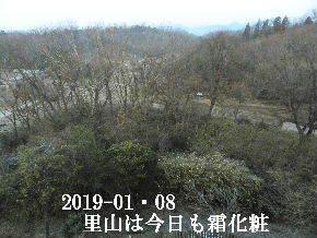 2019-01・08 霜化粧の里山 (1).JPG