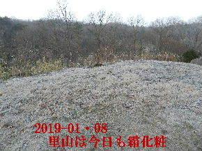 2019-01・08 霜化粧の里山 (2).JPG