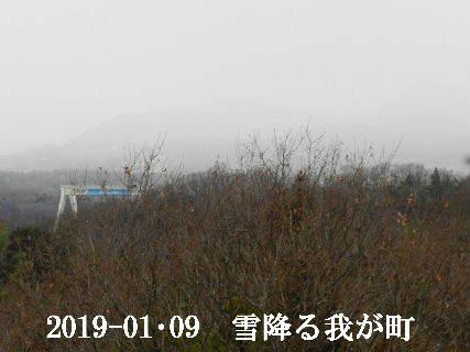 2019-01・09 今日の我が町.JPG