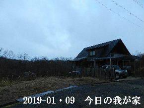 2019-01・09 今日の里山は・・・ (1).JPG