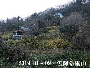 2019-01・09 今日の里山は・・・ (4).JPG