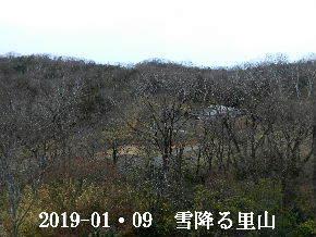 2019-01・09 今日の里山模様・・・ (1).JPG