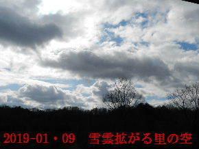 2019-01・09 今日の里山模様・・・ (3).JPG
