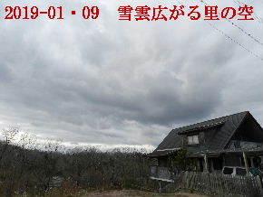 2019-01・09 今日の里山模様・・・ (5).JPG