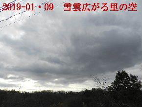 2019-01・09 今日の里山模様・・・ (6).JPG